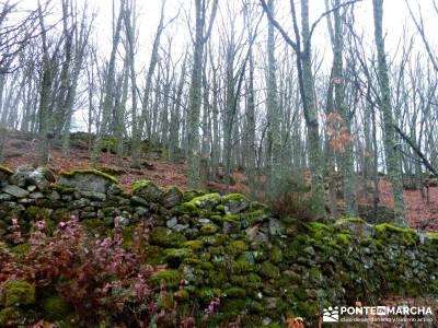 Valle del Ambroz-Sierra de Bejar - Gredos; viajes de senderismo; viajes puente del pilar;excursiones